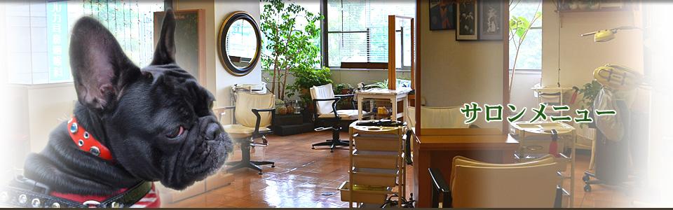 サロンメニュー | 千葉県市原市の美容室シャビーシック