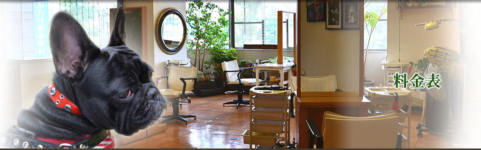 料金表   千葉県市原市の美容室シャビーシック